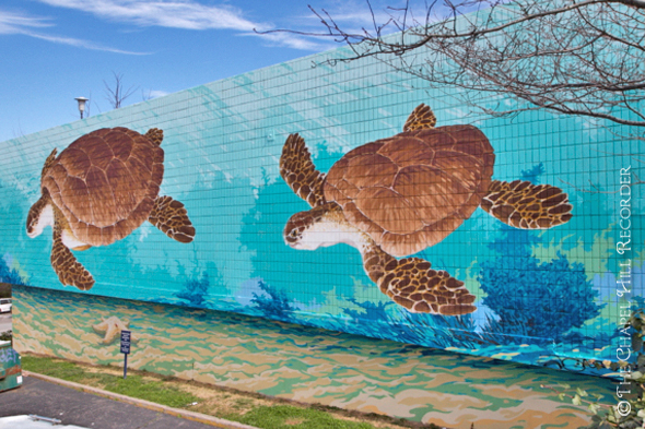 SeaTurtles Mural Walking Tour