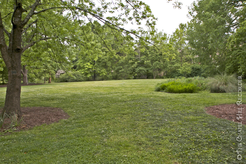 Aboretum Lawn