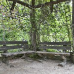 Arbor Benches