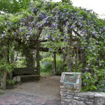 Arbor Entrance I