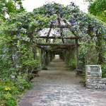 Arbor Entrance III