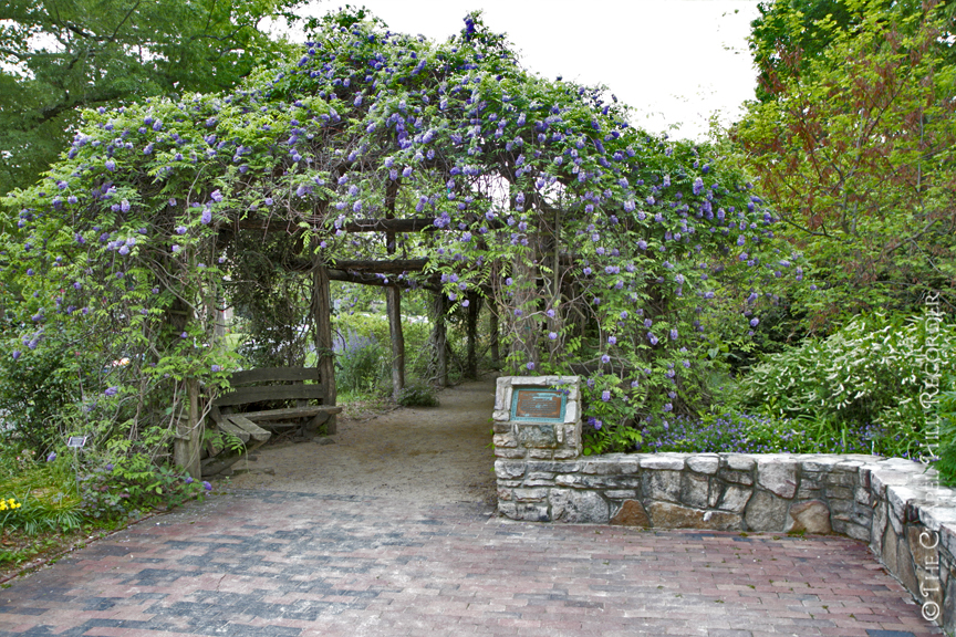 Arbor Entrance IV