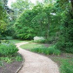 Arboretum Sandy Path